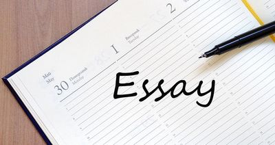 What You have to Know About 123 Essay  total your essay, and